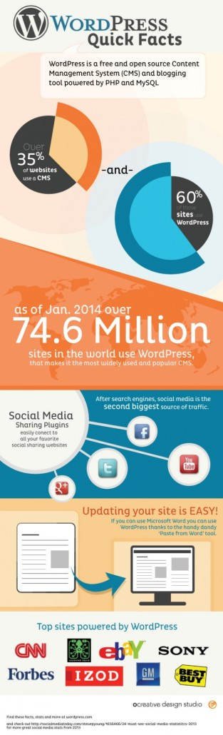 Infographic on WordPress
